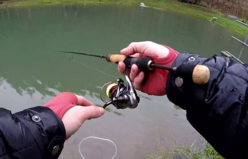 canna trout area